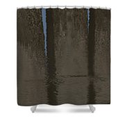 Brown And Blue Reflection Shower Curtain