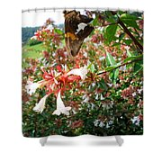 Brown And Yellow Butterfly Shower Curtain