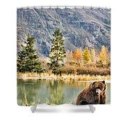 Brown Bear 206 Shower Curtain