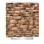 Brown Brick Wall Shower Curtain