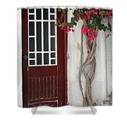 Brown Door In Greece Shower Curtain