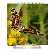 Brown-eyed Beauty Shower Curtain