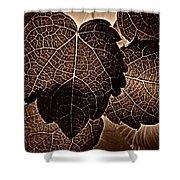 Brown Ivy Shower Curtain