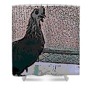 Brown Red Old English Game Bantam 2 Shower Curtain