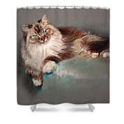 Browny White Shower Curtain