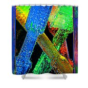 Brushes Shower Curtain