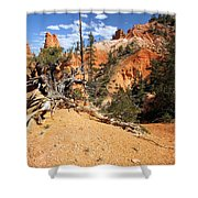 Bryce Canyon Forest Shower Curtain