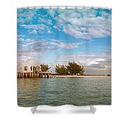 Bubble House IIi Shower Curtain