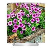 Bucket Of Blooms Shower Curtain