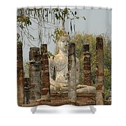 Buddha In Thailand Shower Curtain