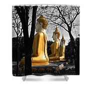 Buddha In The Jungle Shower Curtain by Adrian Evans