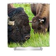 Buffalo Eyes Shower Curtain