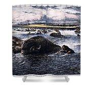Buffalo Hunt, 1874 Shower Curtain