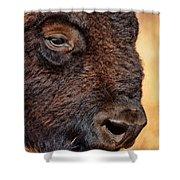 Buffalo Up Close Shower Curtain