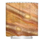 Bull Frog Foot Shower Curtain by Ted Kinsman