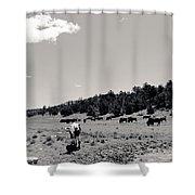 Bull With Buffalo Shower Curtain