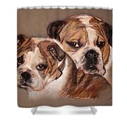 Bulldogs Shower Curtain
