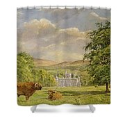 Bulls At Balmoral Shower Curtain