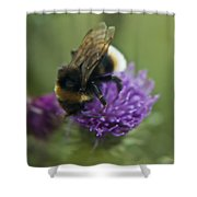 Bumble Bee II Shower Curtain