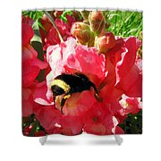 Bumblebee And Snapdragon Shower Curtain
