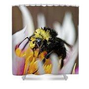 Bumblebee Attacking Flower Shower Curtain