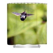Bumblebee Midair Shower Curtain