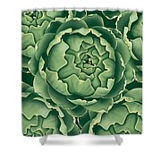Bunch Of Artichokes Shower Curtain