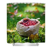 Bunch Of Cranberries Shower Curtain