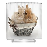 Bunnies A Basket Shower Curtain