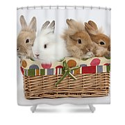 Bunnies In A Basket Shower Curtain