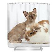 Burmese Kitten And Rabbit Shower Curtain