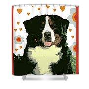 Burmese Mountain Dog Shower Curtain