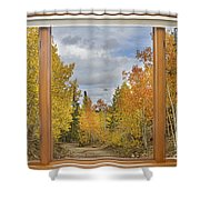 Burning Autumn Aspens Back Country Colorado Window View Shower Curtain