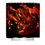 Burning Man Shower Curtain