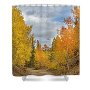 Burning Orange And Gold Autumn Aspens Back Country Colorado Road Shower Curtain