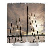 Burnt Pieces Of Black Spruce, Boggy Shower Curtain by Darwin Wiggett