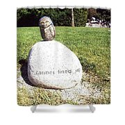 Burrowing Owl Meets Poetry Stones Of Crescent Beach Shower Curtain