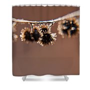 Burrs Shower Curtain