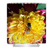 Busy Bee On Yellow Flower Shower Curtain