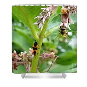 Busy Bodies Shower Curtain