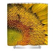 Busy Sunflower Shower Curtain