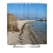 Butler Beach Shower Curtain