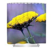 Butter Weeds Shower Curtain