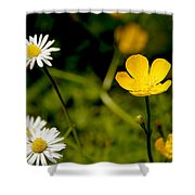 Buttercup In Riverside Park Shower Curtain
