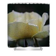 Butterdrops Shower Curtain