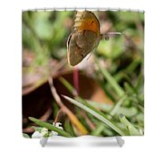 Butterflied Shower Curtain