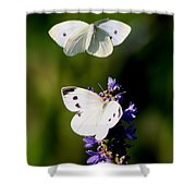 Butterfly - Visiting Shower Curtain