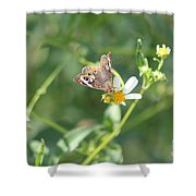 Butterfly 21 Shower Curtain