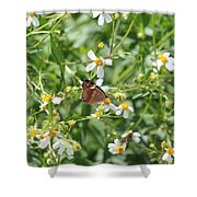 Butterfly 32 Shower Curtain