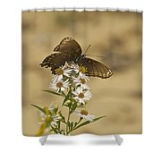 Butterfly 3322 Shower Curtain